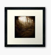 Mountain Steps (Holga) Framed Print