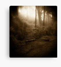 Mountain Steps (Holga) Canvas Print