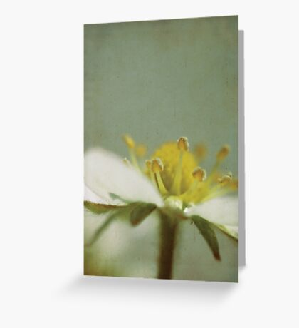 Strawberry Flower Greeting Card