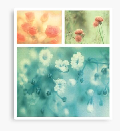 Collection ~ Flowers Canvas Print