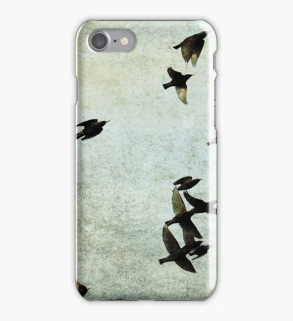 Let's fly iPhone Case/Skin