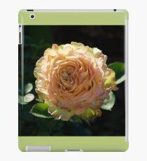 Rose in Bloom | La Rosa Donne d'Italia 150 iPad Case/Skin