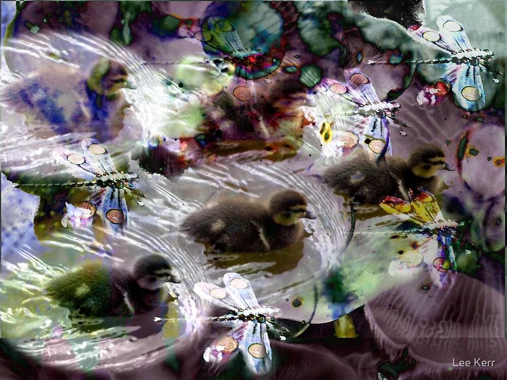 Ducklings and Dragonflies by Lee Kerr