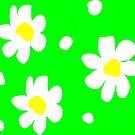 Daisies by Vitta