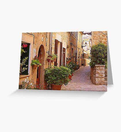 The Brown Shuttered Houses Of Valldemossa Greeting Card
