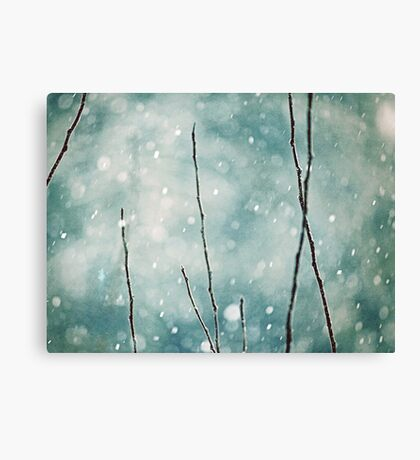 The sound of winter Canvas Print