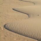 Miniature Dune Landscape by Alexandra Lavizzari