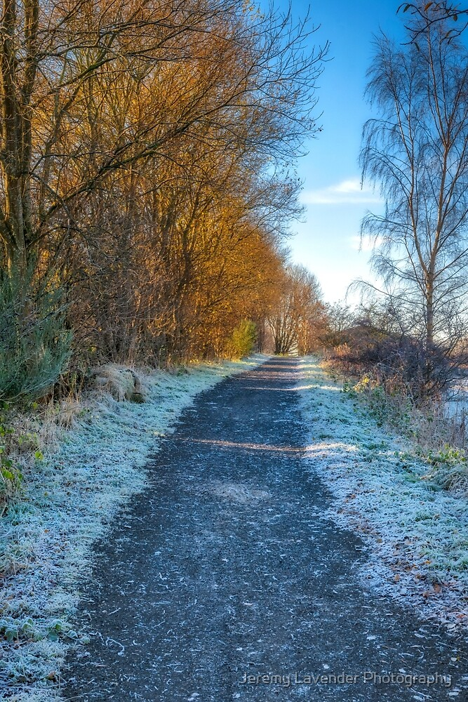 Winter Path in Scotland by Jeremy Lavender Photography