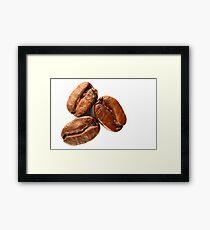 Three Coffee Beans Framed Print