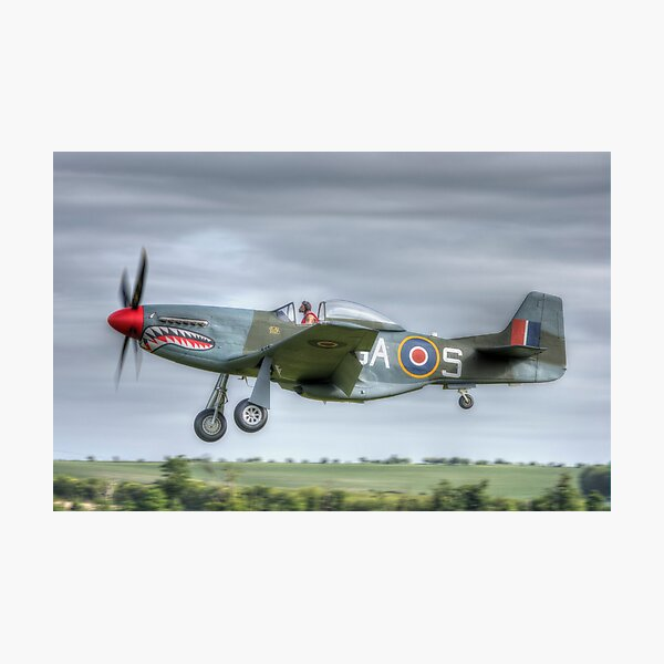North American Mustang Photographic Print