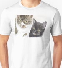 Two cats - tabby and tortie T-Shirt