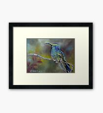 Jewels of Nature by Chris Brandley Framed Print