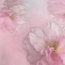 Pink Arrangement by AnnieSnel