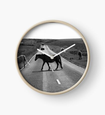 Horse crossing a road in Swansea`s Gower, protected area in Wales Clock