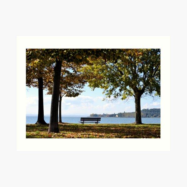 Bench beneath the autumn trees Art Print