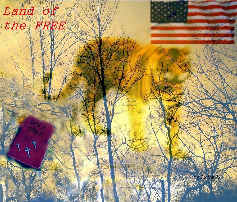LAND OF THE FREE by trisha22