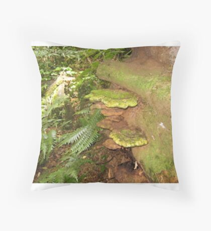 Brackets in the Rainforest G.C.Hinterland Throw Pillow
