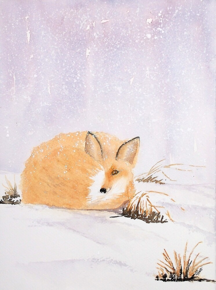 Winter Fox by Pat  Elliott