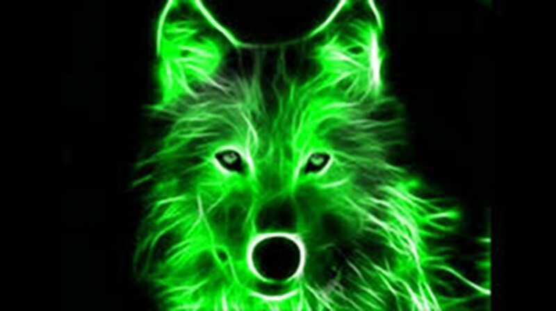 """An Amazing Neon Green Wolf On A Black Background"" Canvas"