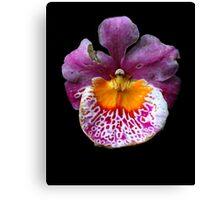 Unique Orchid  Canvas Print
