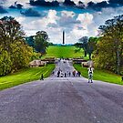 APPROACHING  CROWDS..... by vaggypar
