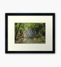 River greenery Framed Print