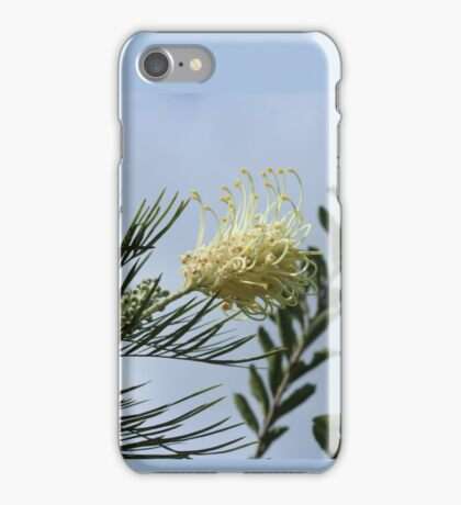 Pretty Pale Lovely Light Lemon Gorgeous Grevillea iPhone Case/Skin