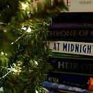 Holiday Bookishness by Jackie Peterson