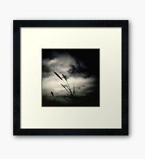 A Winters Kill. Framed Print