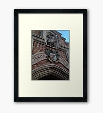 Toads wild ride Framed Print