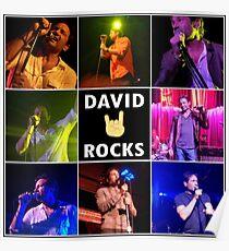 David Duchovny Rocks Poster
