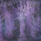 twilight forest by Marianna Tankelevich