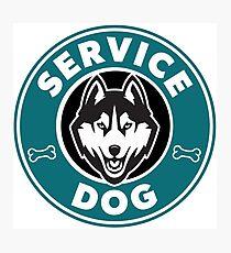 Service Dog Badge Photographic Print
