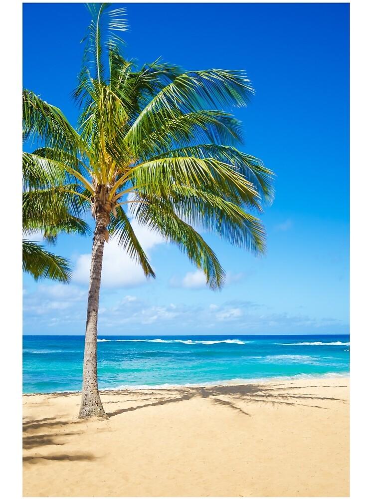 Palm trees on the sandy beach in Hawaii von ellensmile