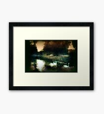 Swans on a river circa 1910 Framed Print