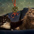 Chloe & Jasper Under the Mistletoe by Lynn Starner