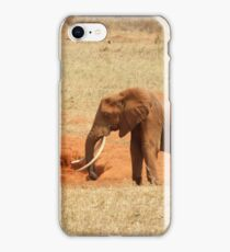 Elephant following her young iPhone Case/Skin