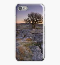 Frosty Start iPhone Case/Skin
