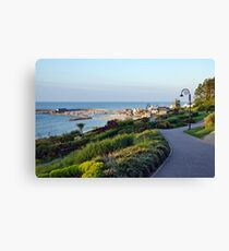 Garden Overview ~ Lyme Regis Canvas Print