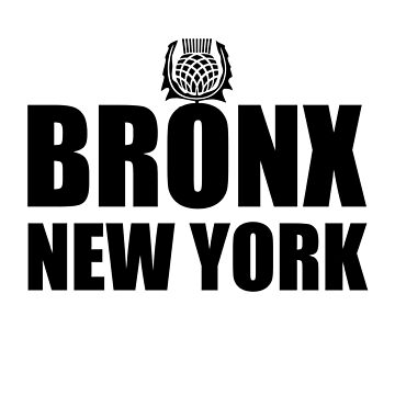 Bronx New York Black by matanga