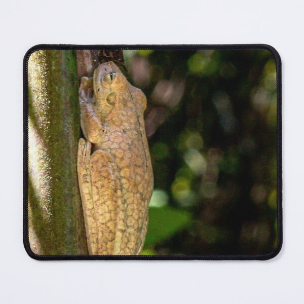 Frog on Bamboo Mouse Pad