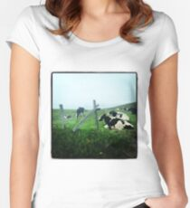 Cows Women's Fitted Scoop T-Shirt