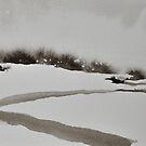 I Wish I Had A River II by Jamie Zubairi