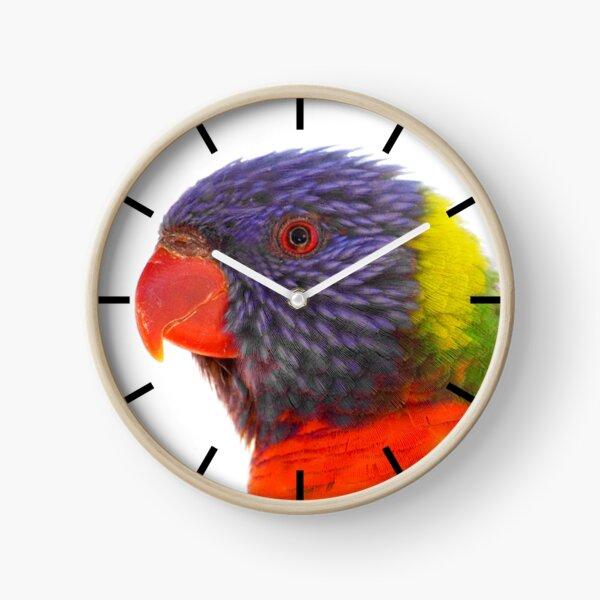 Lorikeet Clock Clock