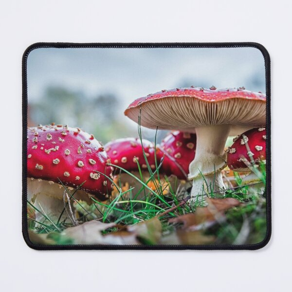 Red And White Mushrooms Mouse Pad