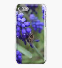 Finger Lakes, New York iPhone Case/Skin