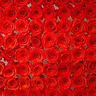 Infinity Roses by Michael J Armijo