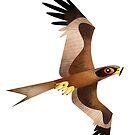 Black Kite caricature by rohanchak