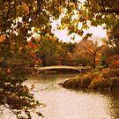Autumn Crescendo by Jessica Jenney
