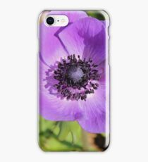 Carnival of Flowers - Toowoomba iPhone Case/Skin
